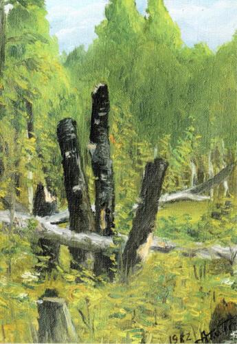 1982. Бурятия. Лес у озера Щучье, масло