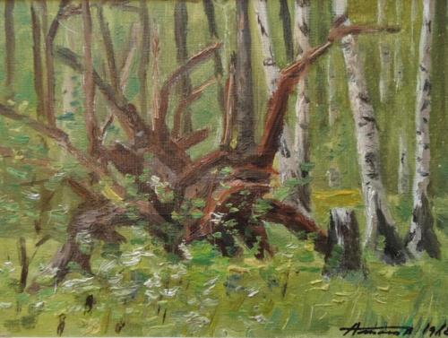 1982. Бурятия. Озеро Щучье. Коряги в лесу, масло