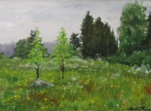 1989. Аккахарью. Поляна у леса, масло