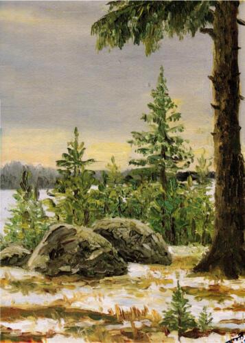 1991. Сиверская. Лес. Зима, масло