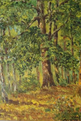 2002. В солнечном лесу, масло