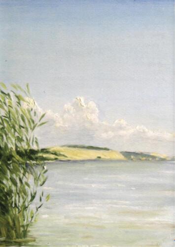 2004. Куршский залив. Дюны, масло