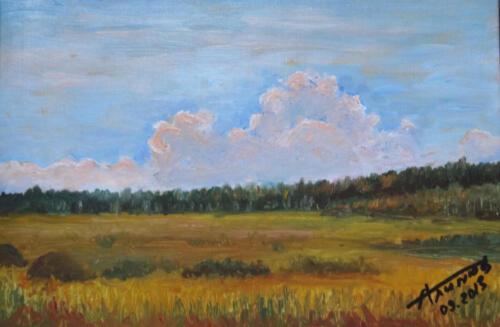 2013. Вечерние облака, масло